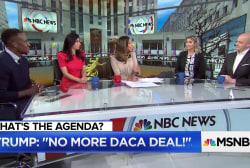 McMullin: Trump using DACA as bargaining chip is 'terrible politics'