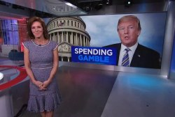 How President Trump could slash spending from the funding bill