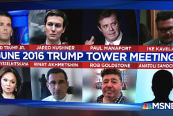The Big Question: Have the transcripts revealed anything new about the Trump Tower meeting?