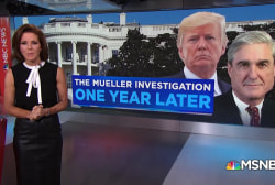 America one year into Mueller's investigation