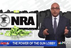 The power of the NRA gun lobby: For Fact's Sake
