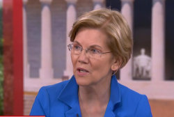 Sen. Warren on family separation policy: It's entirely on Trump