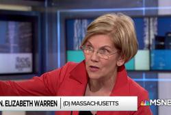Warren: Even partial Democratic 2018 win can 'stop of the bleed'