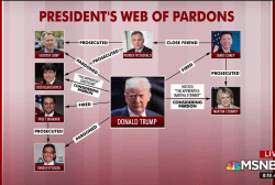 What Trump's pardons say about the president