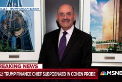 Trump's finance chief subpoenaed in Michael Cohen probe