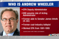 Who is Andrew Wheeler, the new acting head of the EPA?