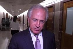 In contrast to Trump, Senate passes resolution supporting NATO