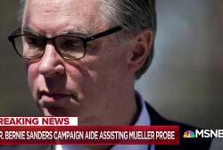 Bernie Sanders aide to assist Mueller in Manafort case: Buzzfeed