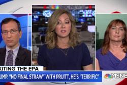 What pushed EPA Chief Scott Pruitt to finally resign?