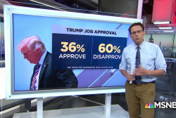 Disapproval of Trump hits new high
