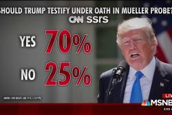 Should Trump testify under oath? Most say 'yes'