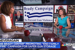 'End Family Fire' aims to 'change the dialogue' about gun safety