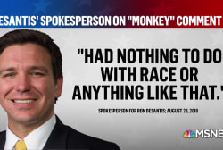 Interpreting Ron DeSantis' 'monkey this up' comment