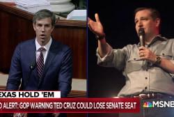 Ted Cruz begs Trump for lifeline in Texas Senate race