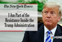 Does the anonymous anti-Trump NYT op-ed have multiple authors?
