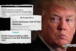 Will Trump's base believe new accounts suggesting he's mentally unfit?