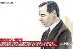 Trump adviser Papadopoulos sentenced to 14 days in prison