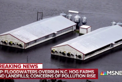 Toxic coal ash, hog farms compound extent of NC flooding disaster