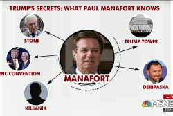 Manafort agreement a 'chilling development' for WH