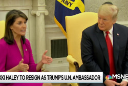 Nikki Haley quits Trump cabinet sparking speculation as to why