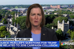 Barbara McQuade: Mueller investigation must be in 'mature' stage