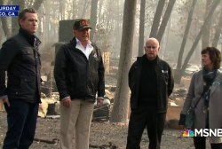 Rep. Ted Lieu: If preventing wildfires was as easy as raking leaves we would've done that by now