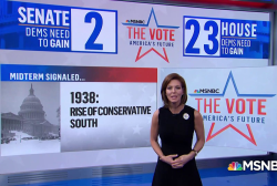 Midterm elections & the historical indicators that follow