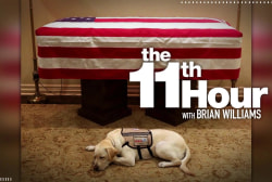 George H.W. Bush's service dog Sully stays by his casket