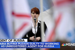Fmr. Ambassador: Butina was able to meet people close to President
