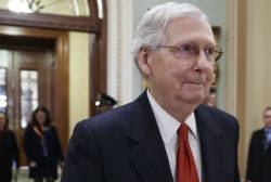 GOP senator reportedly tells McConnell shutdown is 'your fault'