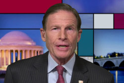 Blumenthal questions truthfulness of Trump Jr.'s Senate testimony