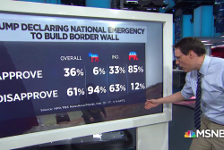 Poll: 61% disapprove of Trump's National Emergency