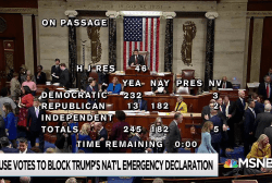Trump border 'emergency' runs into wall of opposition in Congress
