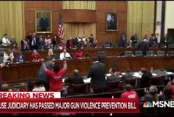 House Judiciary passes first major gun violence bill in decades