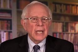 Bernie Sanders joins long list of 2020 Democratic candidates