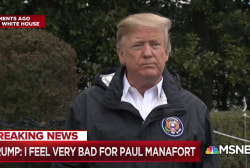 President Trump: 'I feel very badly for Paul Manafort'