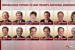 Conservative praises 12 GOP, calls out others who backed Trump