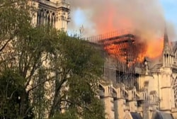 Stunning moment: Art historian's reaction to Notre Dame fate