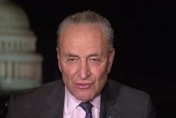 Sen. Chuck Schumer calls McConnell speech 'despicable'