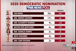Biden up and Sanders loses steam in new polling