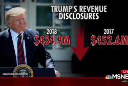 Trump Org. sees revenues slightly decline in '18