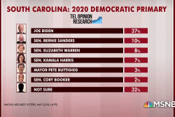 SC Dem primary poll: Beyond Biden lead, many undecided