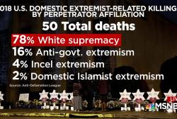 U.S. ill-equipped to fight domestic terror