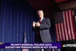Green light from party, warnings lights from polls: Trump prepares to run again