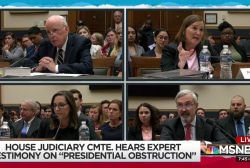 Criminality of Trump conduct explored in Congressional hearing