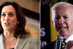 Are 2020 Democrats more divided or united on the issue of race?