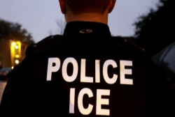 NYCLU Director on weekend ICE raids: 'Climate of fear' in New York was abnormal