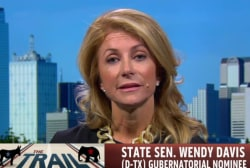 Wendy Davis defends controversial ad