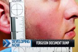 What the Ferguson evidence dump reveals