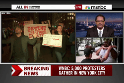 Disagreement over race's role in Garner case